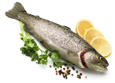 Can a high protein diet protect against stroke healthista for Can cats eat raw fish