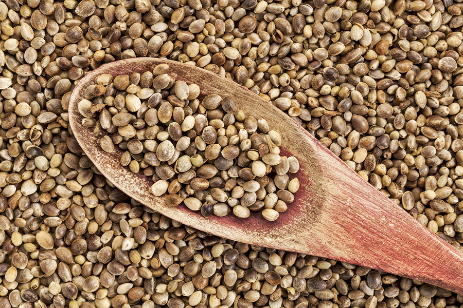 background of organic dried hemp seeds with a rustic wooden spoo