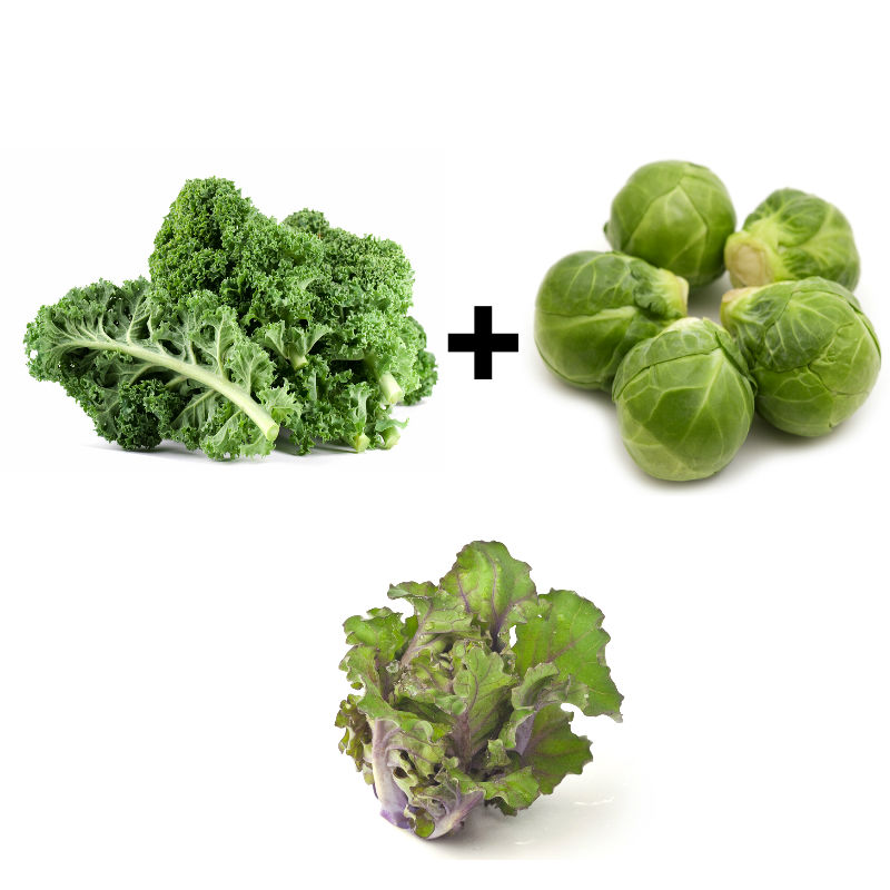 It's the Brangelina vegetable: A cross between two stars ...