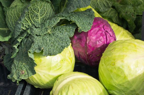 stress reducing foods. cabbage. healthista.com