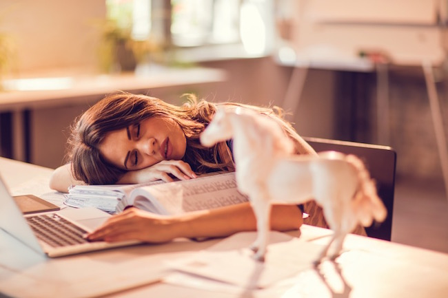 nap, how sleep perfectionism is keeping you awake, by healthista.com