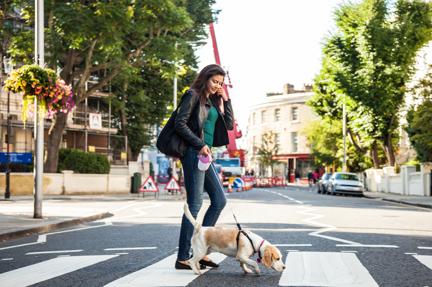 dog-walking-9-ways-to-make-your-brain-more-plastic-by-healthista