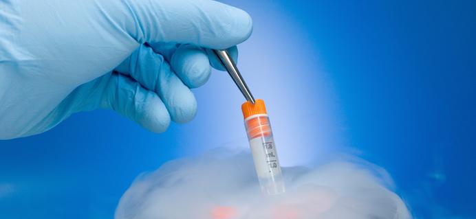 How to freeze your eggs - a fertility expert explains - Healthista