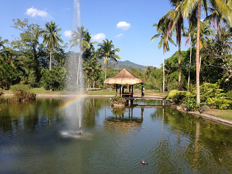 Spa of the week The Farm at San Benito, The Philippines, by healthista.com 8 (2)
