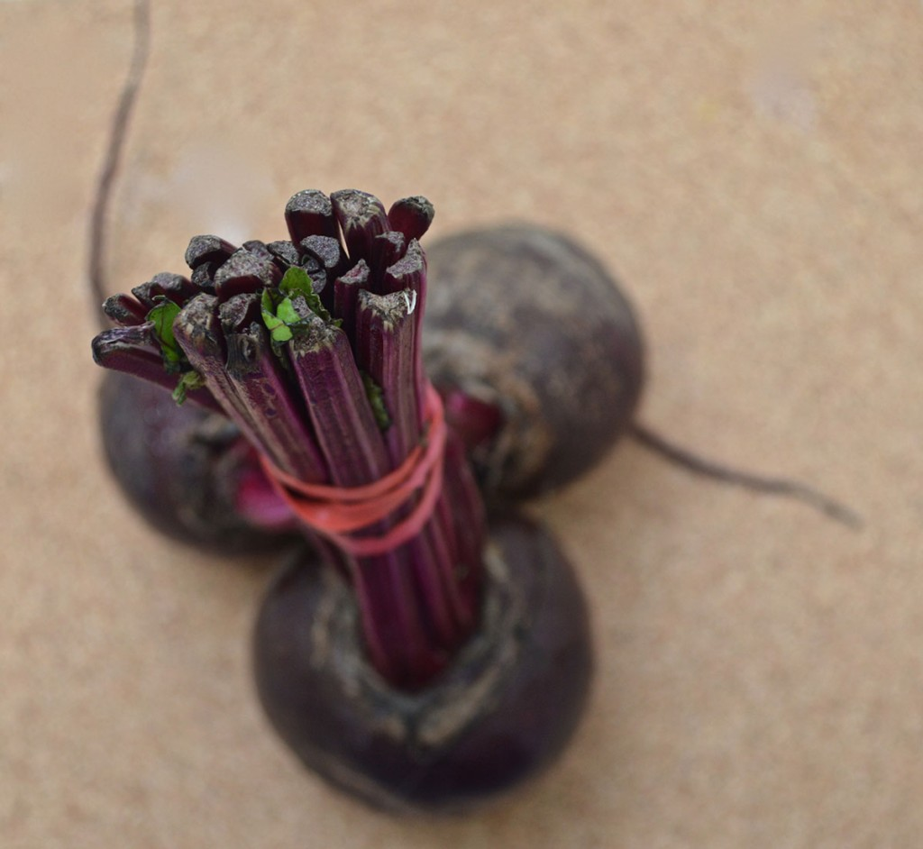 beetroot recipes paleo The PERFECT paleo dinner party