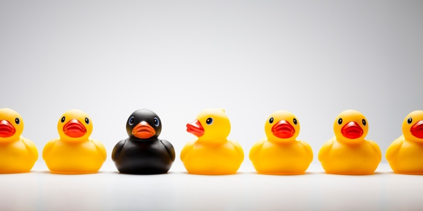 yellow plastic ducks with 1 black duck, 6 signs that you're an outsider, by Healthista.com