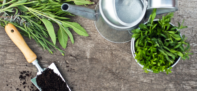 5 easy ways to grow your own vegetables and herbs  even if you have little  or no space. 5 easy ways to grow your own vegetables and herbs  even if you