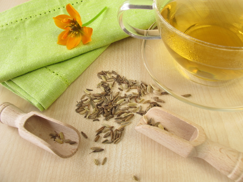 fennel-seed-tea-balance-your-gut-by-Healthista.com-