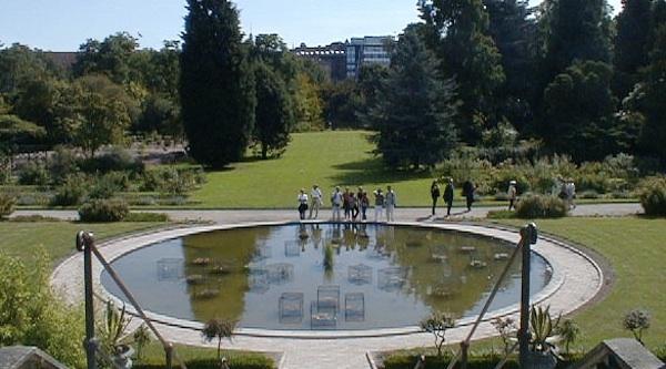 Botanical gardens, healthy places in Copenhagen, by healthista.com