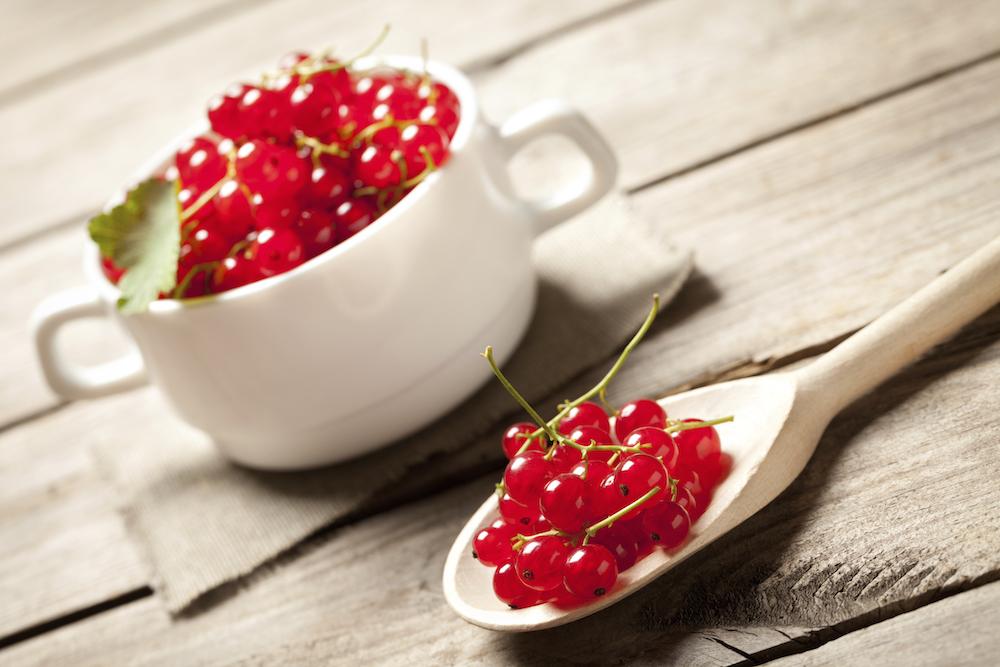 lignon berries
