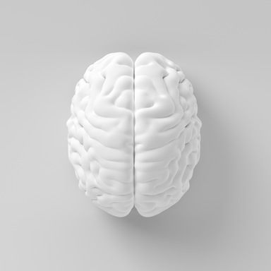 White brain on white background, 7 ways to boost your brain performance, by healthista.com