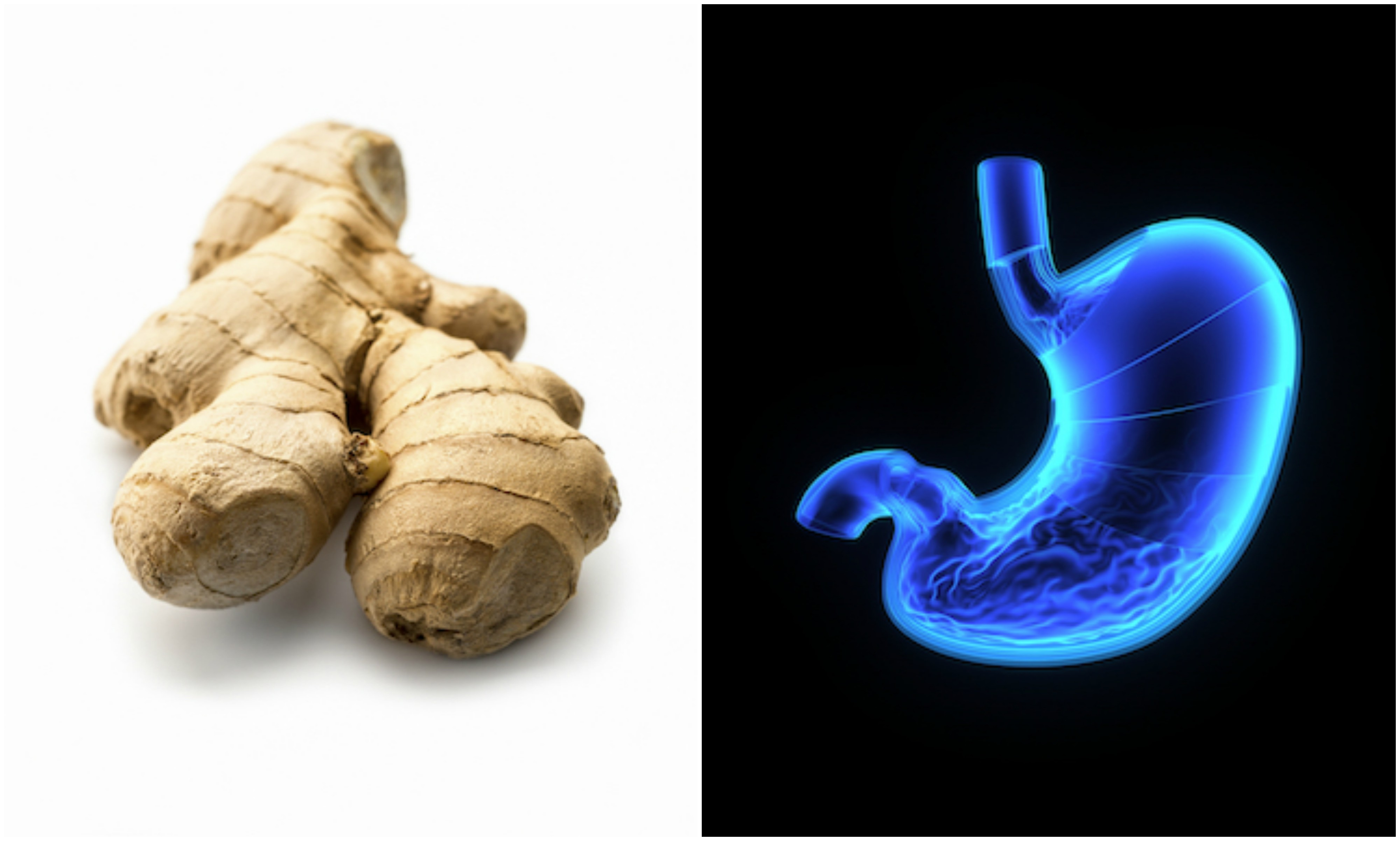 Ginger and stomach, foods that look like the body part they're good for, by healthista