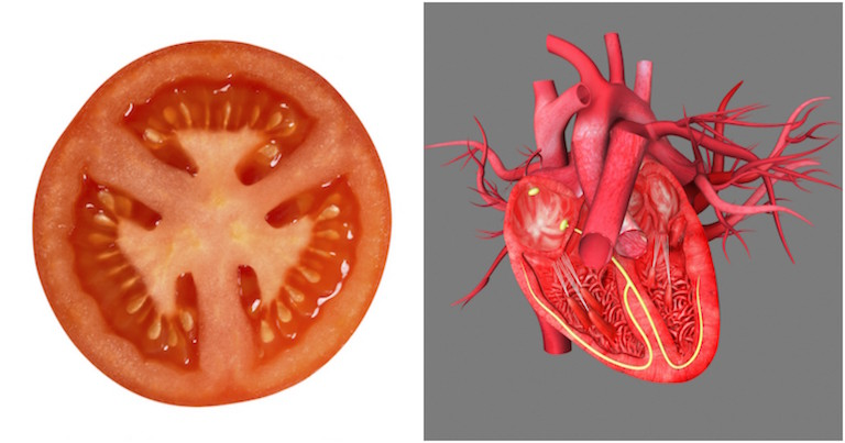 Tomato and heart, foods that look like what they're good for, by healthista