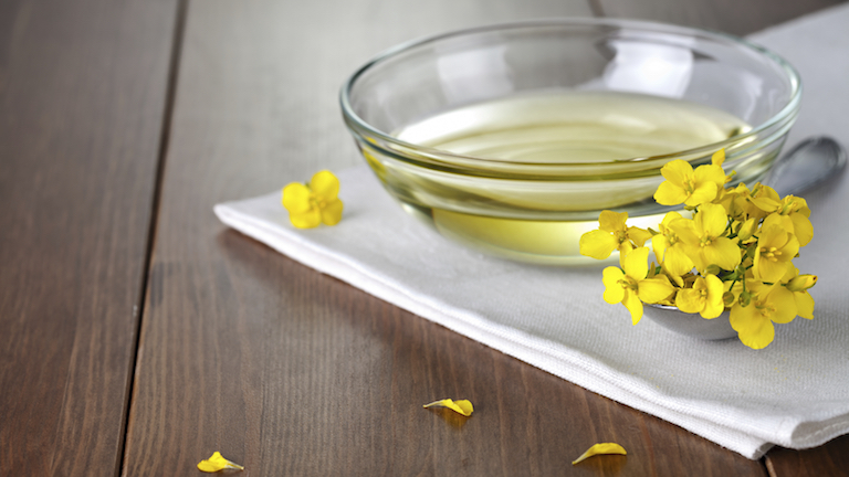 Rapeseed Oil, 9 healthy fats to help you live longer, by healthista