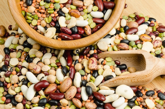 beans, plant-based protein, by healthista.com