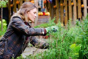 Woman Gardner Taking Care Of Plants, Prune.
