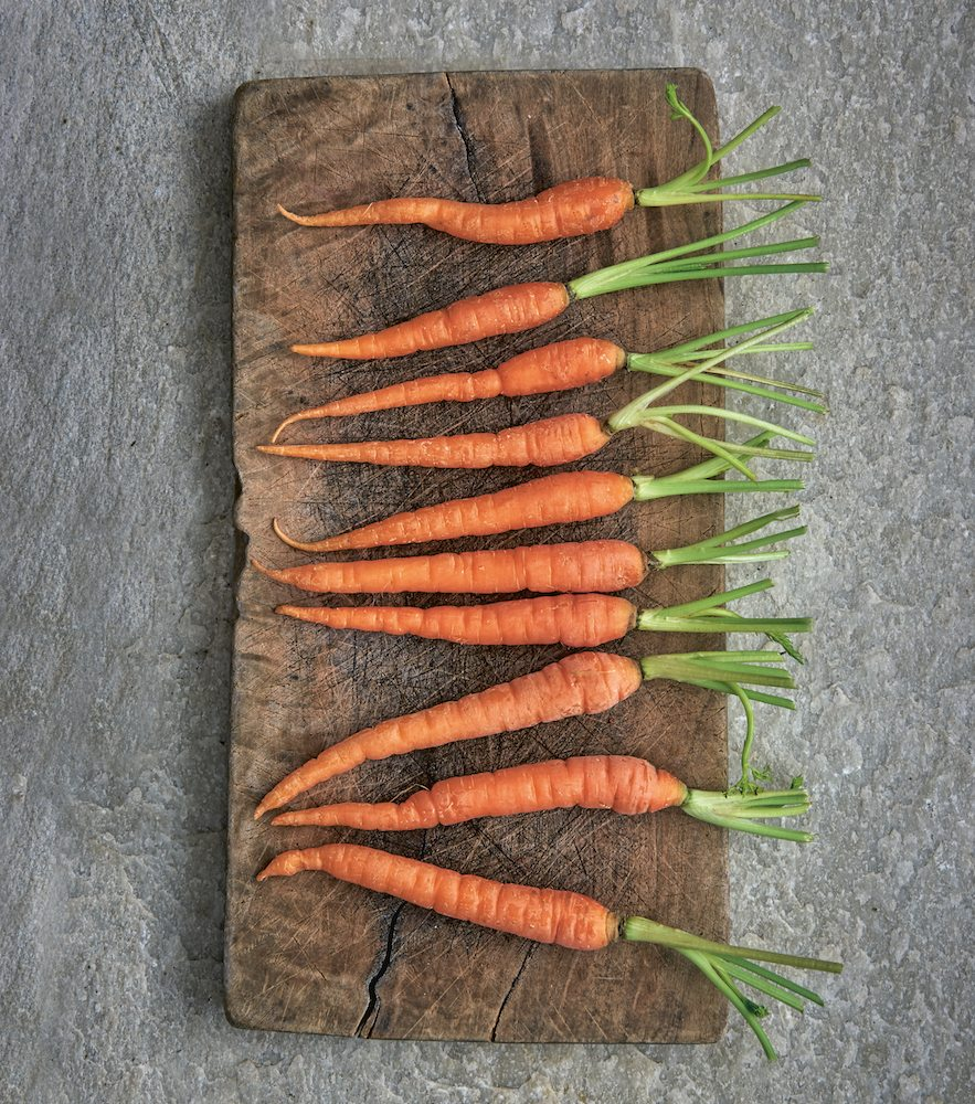 how to make a soup. soupologie. carrots