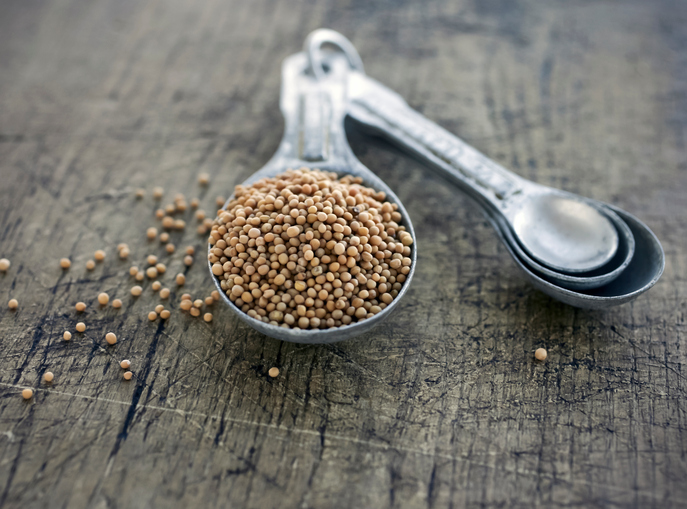 mustard seeds, 8 best fat burning foods by healthista