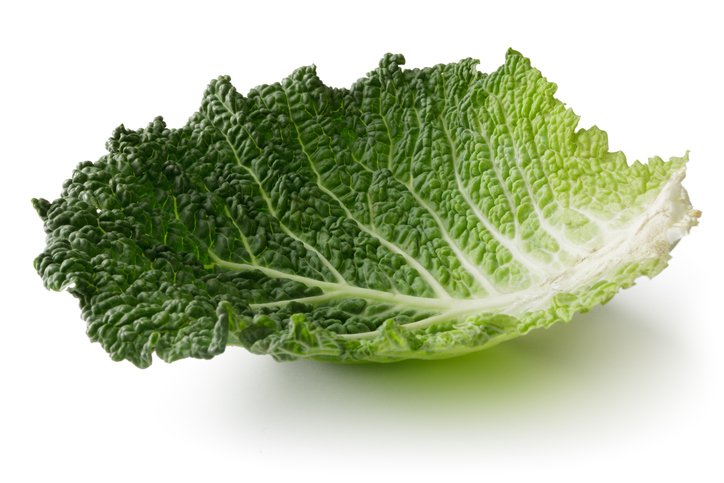 savoy cabbage leaves, breastfeeding tips these mothers wish someone told them by healthista