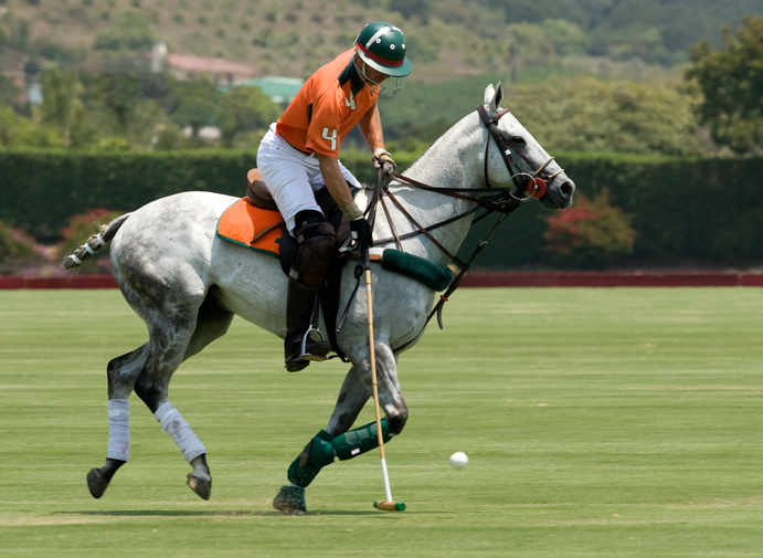 play-polo-10-Best-Christmas-gift-experience-days-for-the-person-who-has-everything-by-healthista.com_