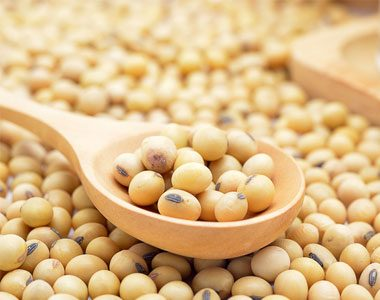 soy-beans-what-is-soy-is-it-dangerous-by-healthista