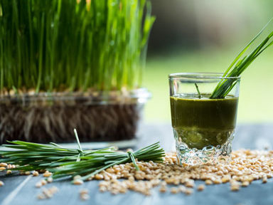 wheatgrass-drink,-30-weight-loss-tips-in-30-days---#30-wheatgrass-powder-by-healthista.com
