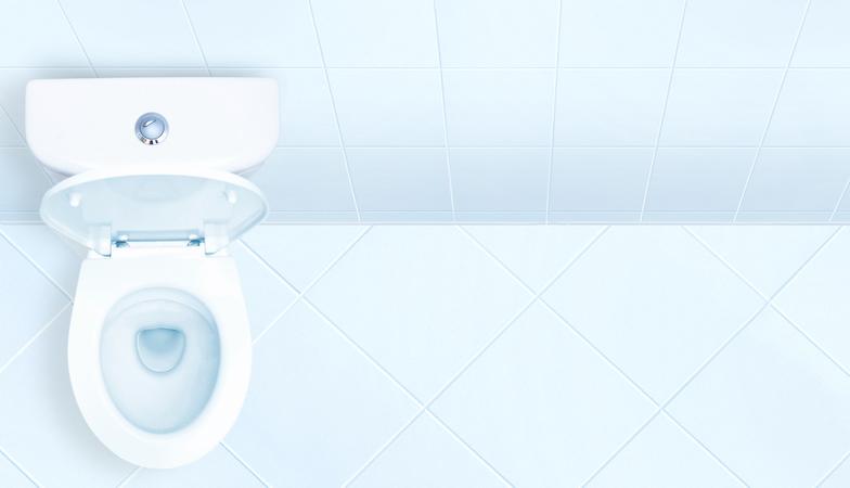 toilet-symptoms-of-IBS-by-healthista-optibac