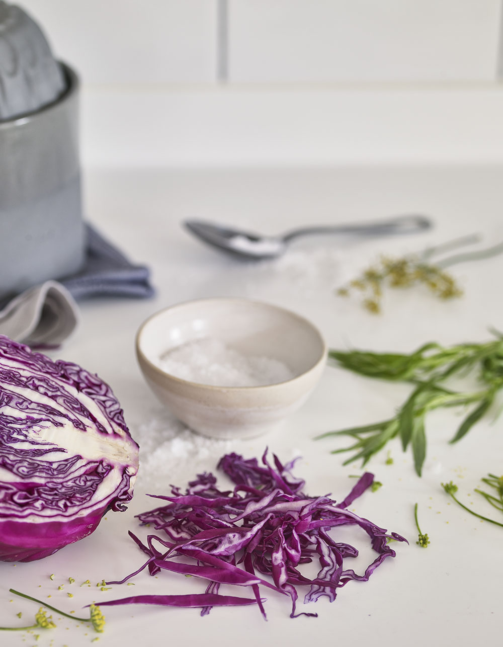 herby kraut herbs to help your health