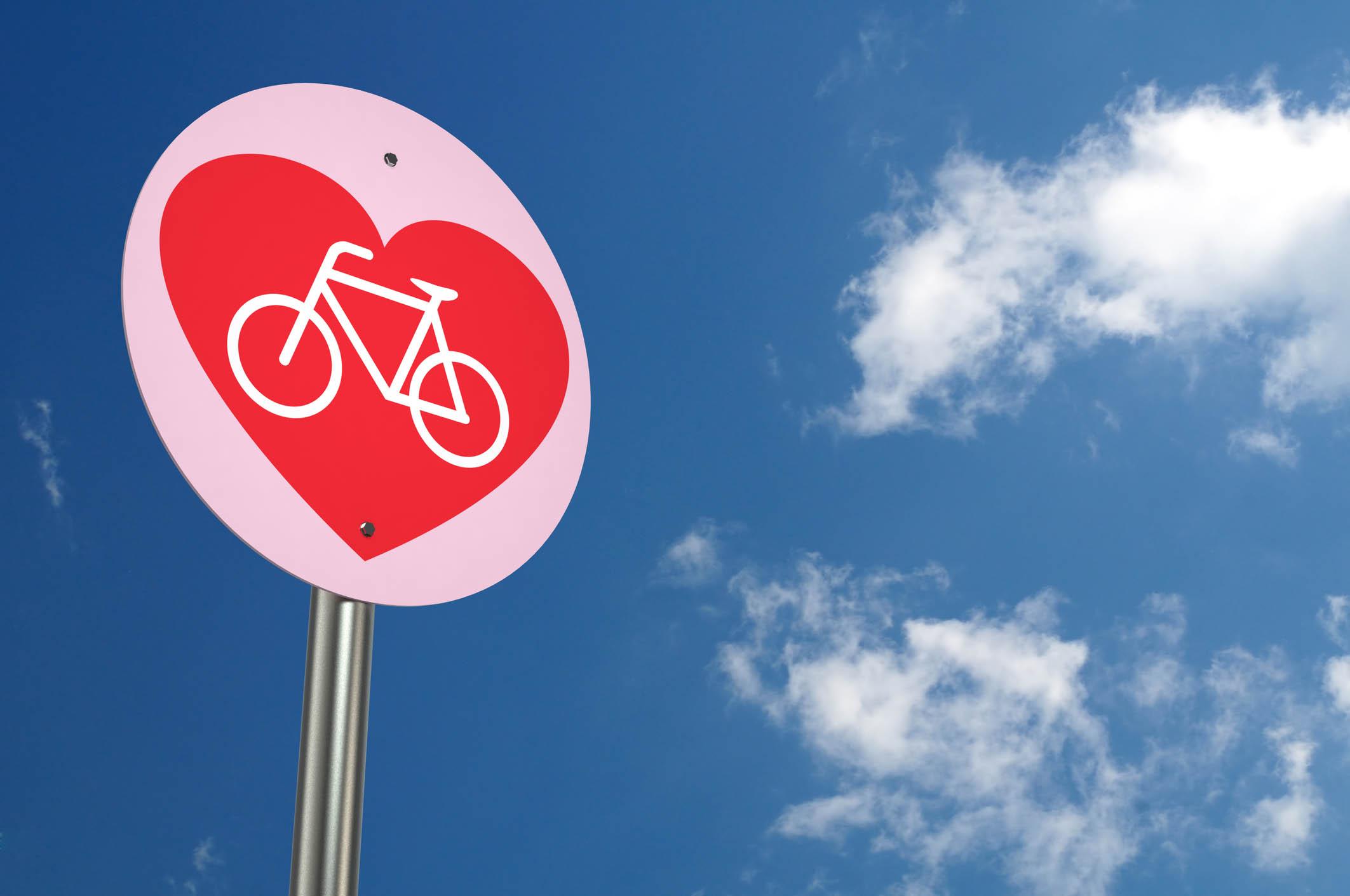 Raleigh motus electic bike e-bike Healthista