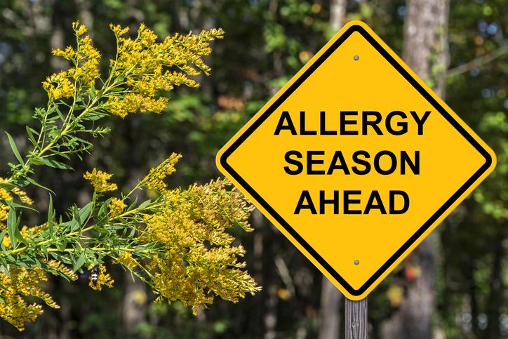 Allergy season, hay fever, by healthista