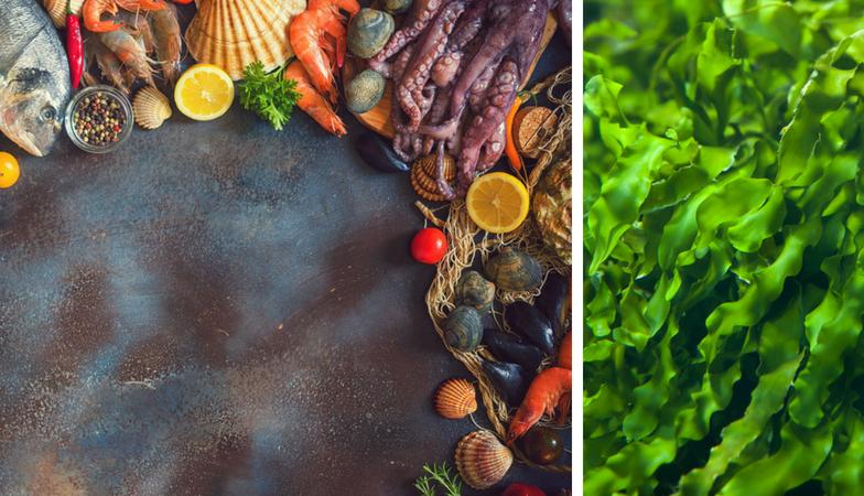 5 steps to future proof brain health dementia alzheimer's seafood omega 3 omega 6 balance Equazen Healthista