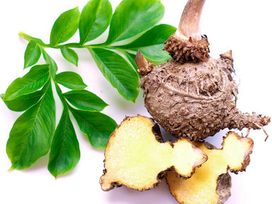 glucomannan-featured-image