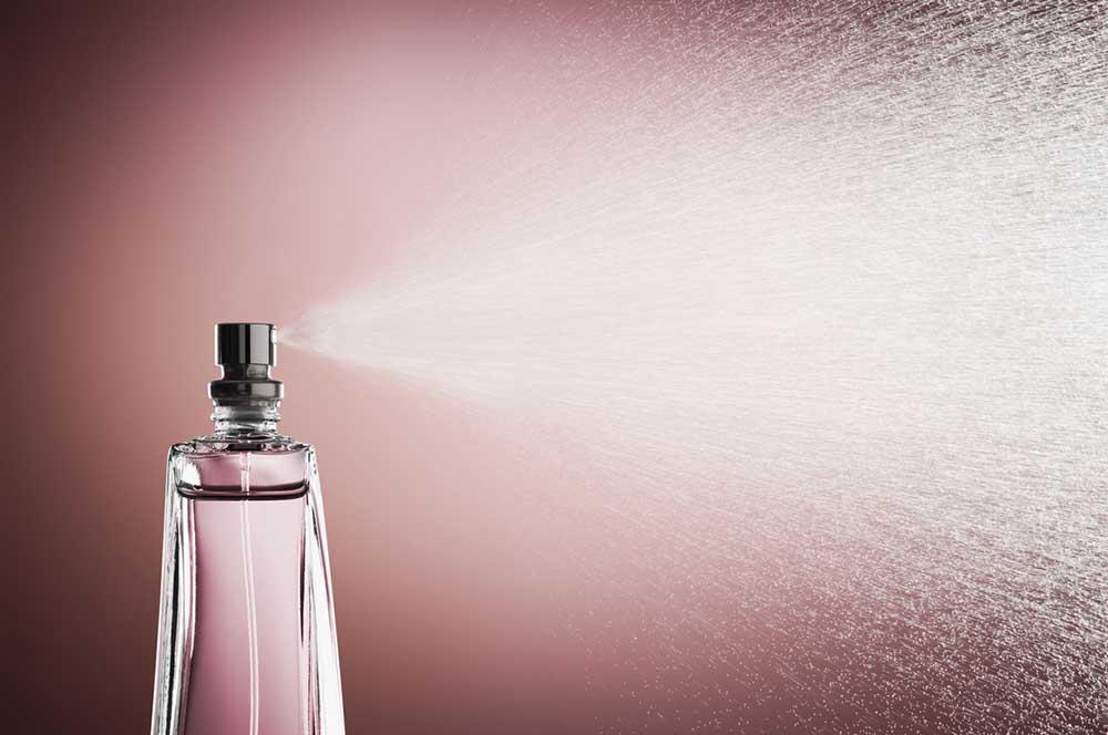 annabelle-meggeson-fragrance