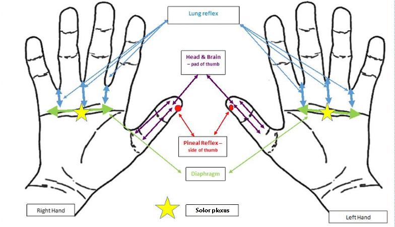 hand-chart,-hand-reflexology-for-sleep-problems-by-healthista.com