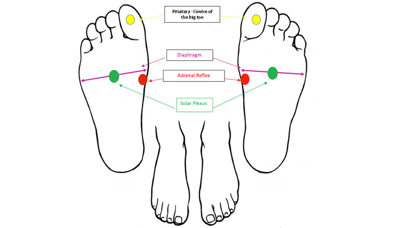 foot-chart,-Foot-reflexology-for-stress-and-anxiety-by-healthista.com