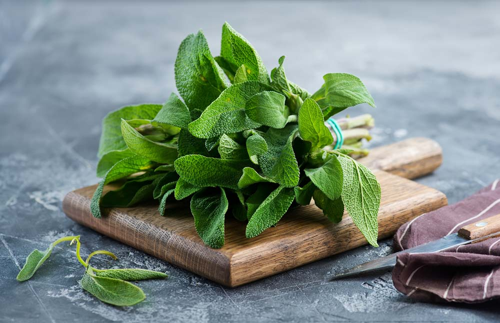 natural-ways-to-ease-menopause-bunch-of-sage.jpg