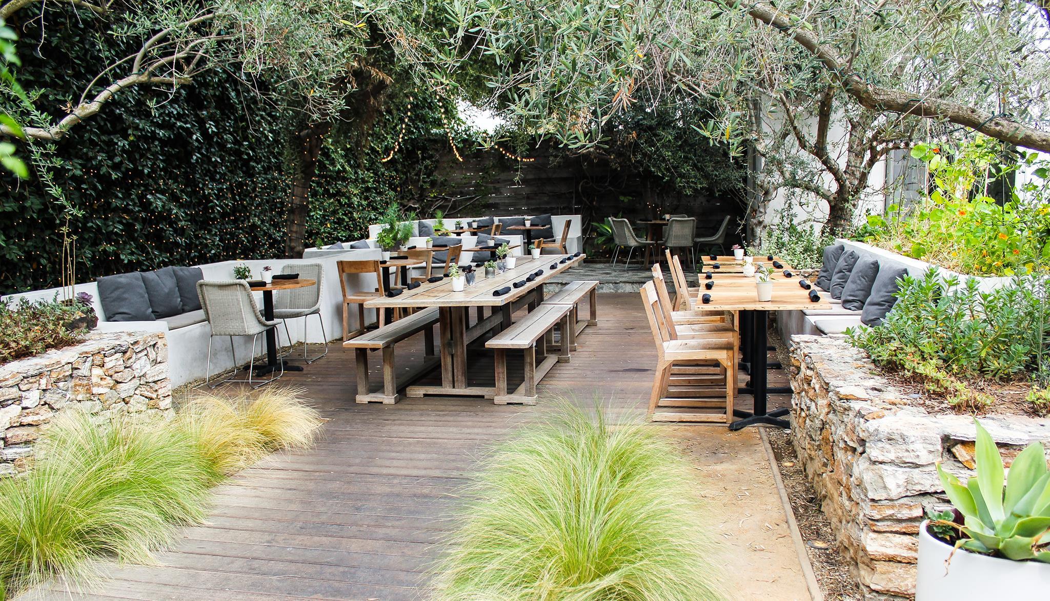 plant food wine, vegan restaurants