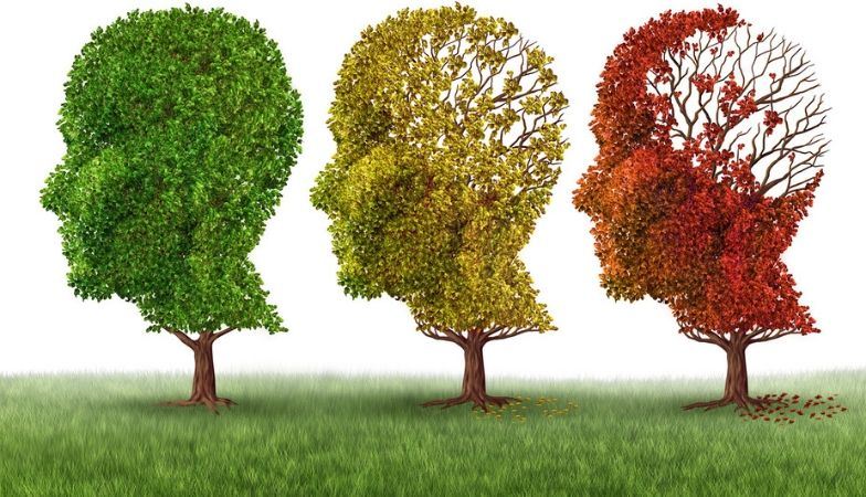 The neuroscientist's rule book for preventing dementia
