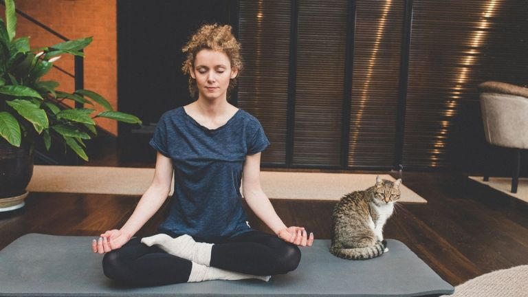 common causes of candida - at home yoga practice with cat