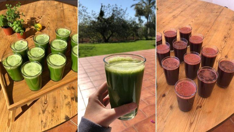 juicing chaya yoga retreats