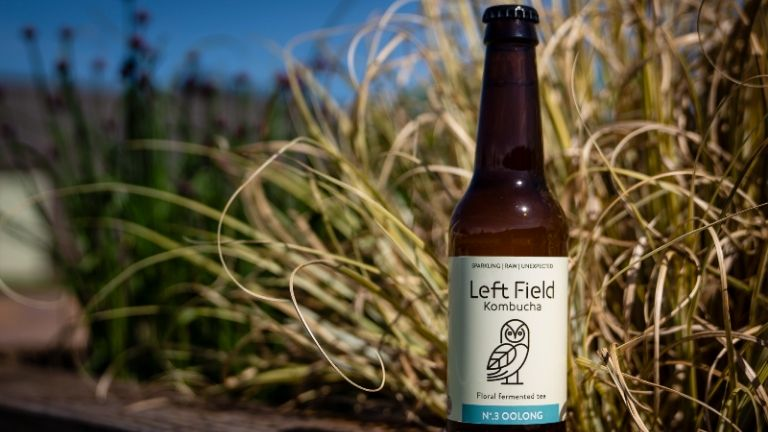 non alcoholic drinks - left field - best kombucha
