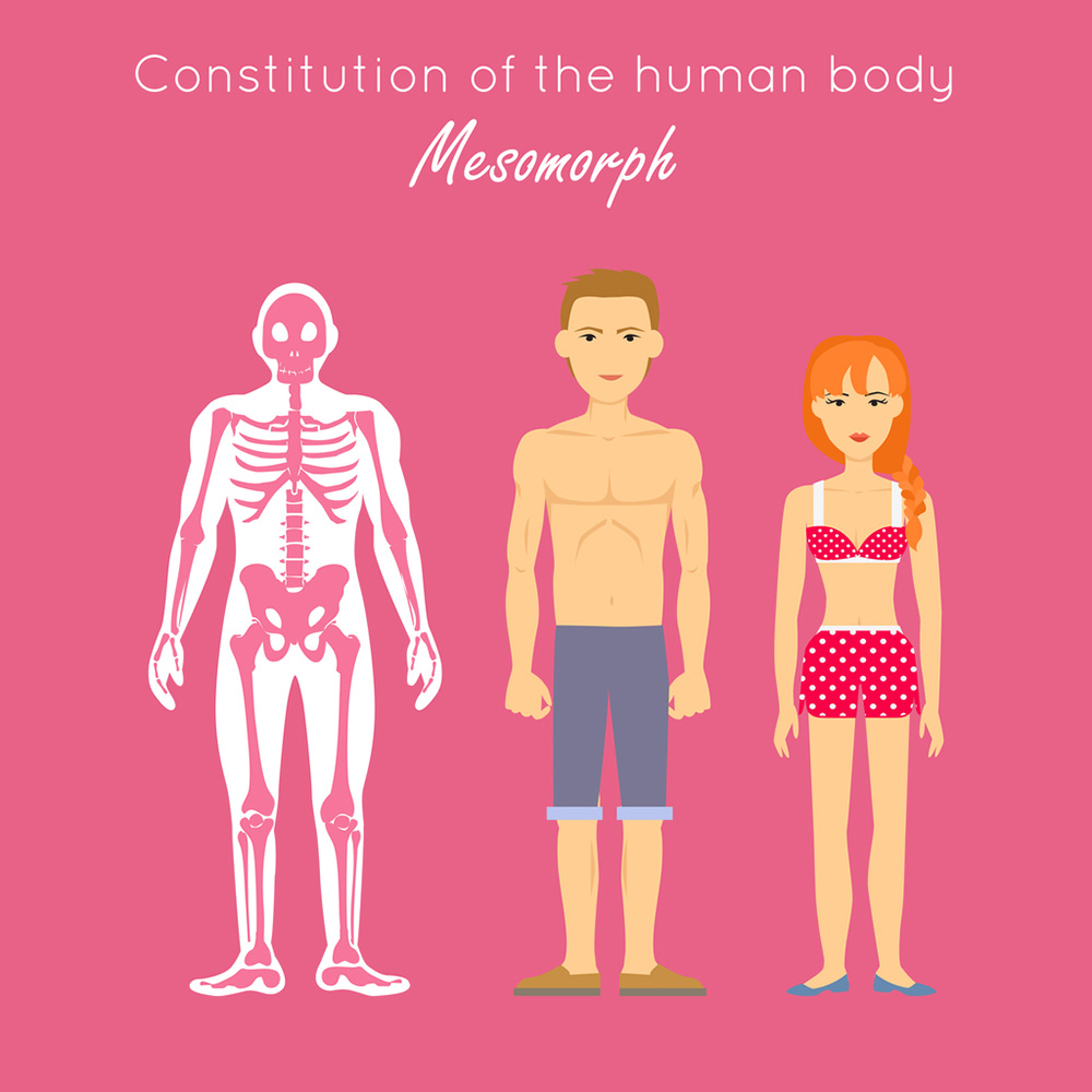 mesomorph-dinas-transformation.jpg