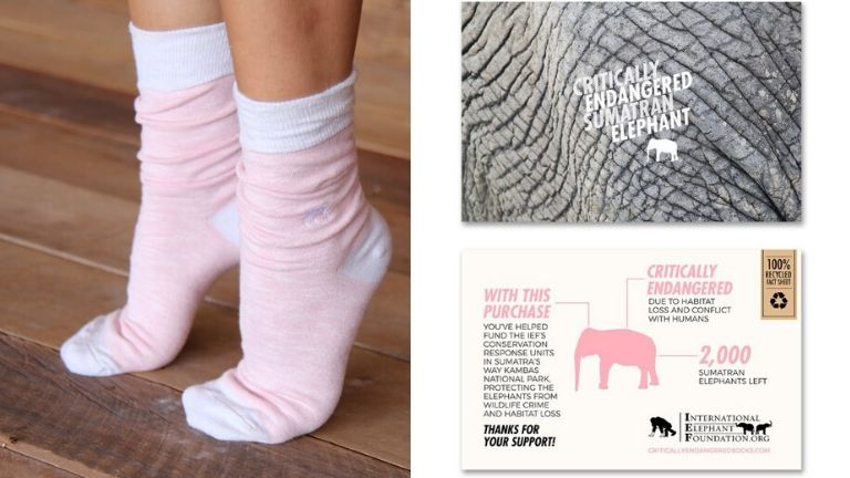 Endangered socks xmas gift guide (1)