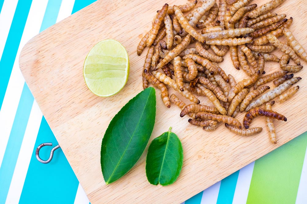 eating-insects-mealworms-on-platter.jpg