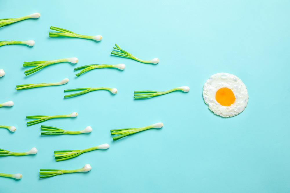 Improve male fertility