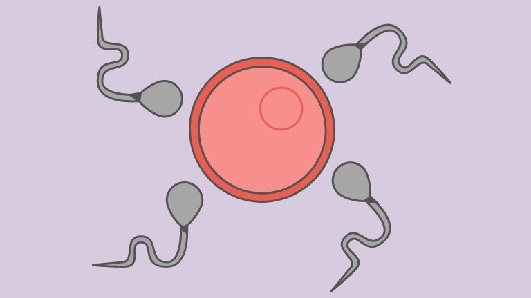What is ovarian reserve Should I get tested sperm and eggs