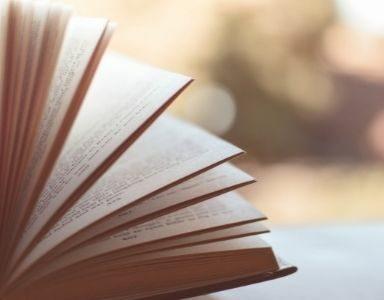 best summer reads feature