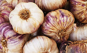 foods for a healthy gut microbiome garlic