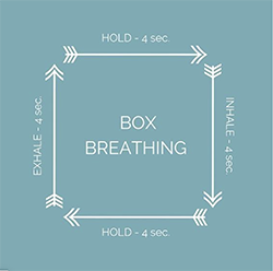nutritionists guide to reducing anxiety box breathing